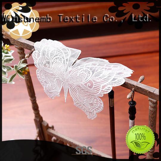 where to buy lace doilies butterflyshaped design Winsunemb Brand company